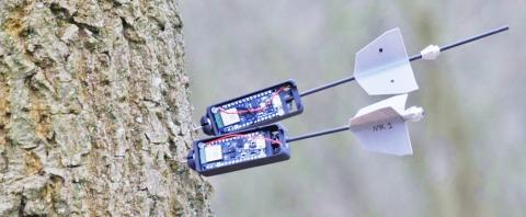 Drones place sensors in the forest